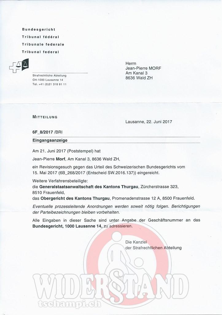 revision_strafanzeige